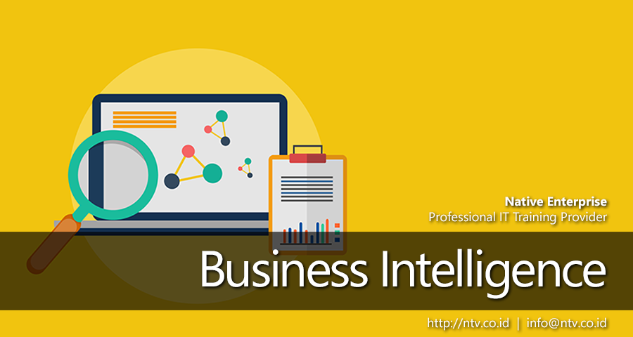 Native Enterprise | Business Intelligence Training