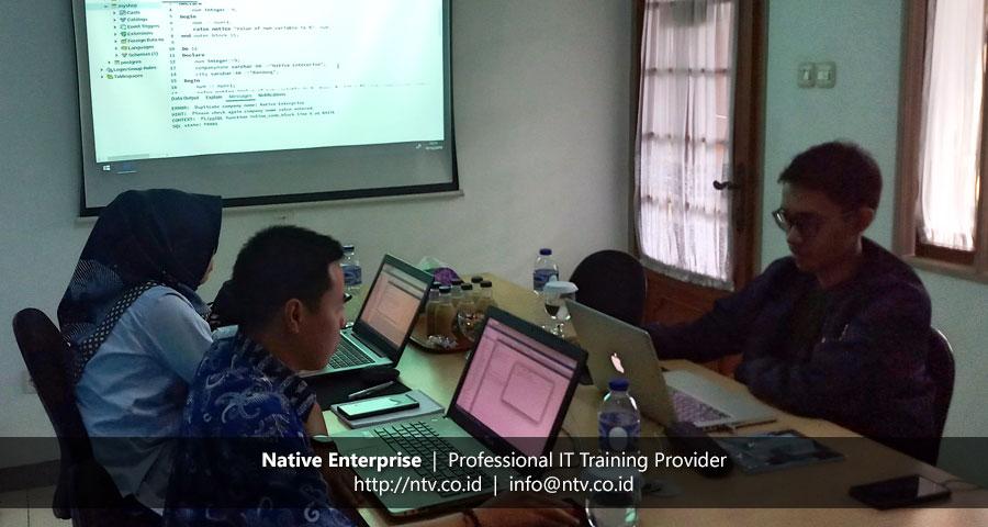 "Training ""PostgreSQL for Database Developer"" bersama BPKAD Provinsi Kepulauan Riau dan Telkom University"